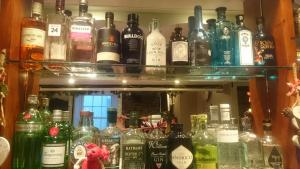 Choose from 35 different gins at the Kings Arms, Hartland, North Devon