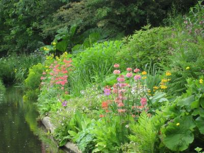 One of the beautiful borders at Docton Mill Gardens & Tea Room, North Devon