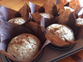 Raspberry muffins from The Old Bakery Coffee Shop, the Square, Hartland, Devon