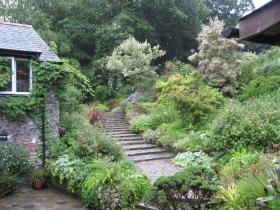 Award-winning gardens and tea room at Docton Mill Gardens, Hartland, North Devon