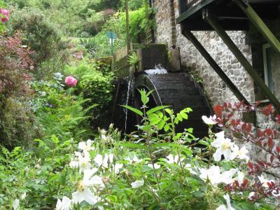 The water wheel at Docton Mill Gardens & Tea Room, Hartland, North Devon