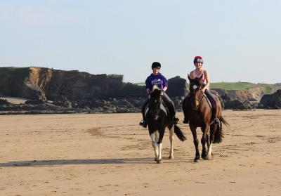 Welcombe Equine - personalised horse riding with a highly experienced trainer