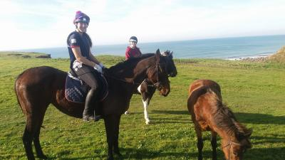 Welcombe Equine - personalised horse riding with a highly experienced trainer on