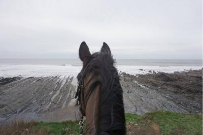 Welcombe Equine - beach rides and ride outs for all abilities in North Devon