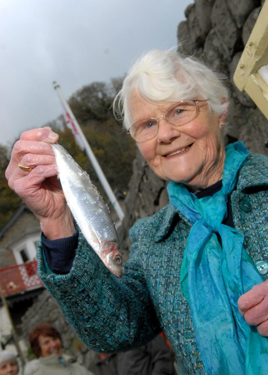 The Clovelly Herring Festival - the annual celebration of the 'silver darlings'