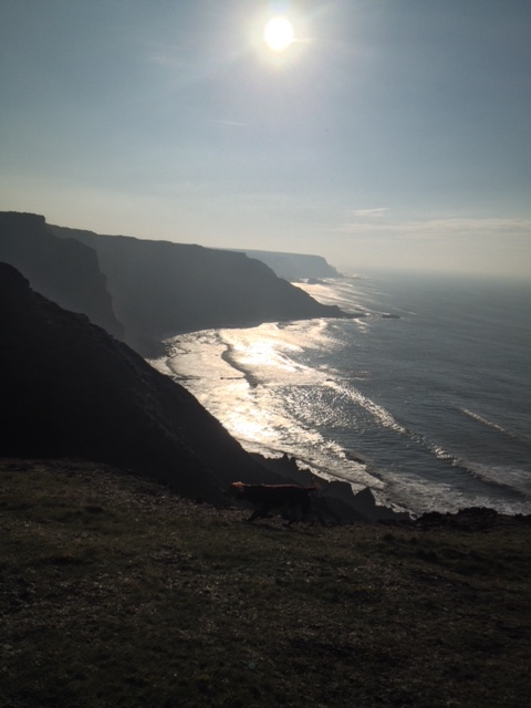 Winter sun on the Hartland Peninsula headlands