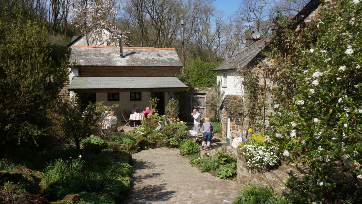 The tea terrace in spring at Docton Mill Gardens & Tea room, Hartland, North Devon