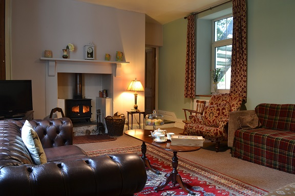 lounge with woodburner, berry park, welcombe.jpg