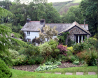 Docton Mill Tea Room & Gardens