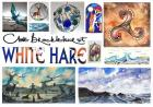 White Hare Gallery Studio - handmade paintings, jewellery and gifts in Hartland, North Devon